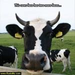 سری جدید عکسهای خنده دار فروردین 93|عکس طنز 93
